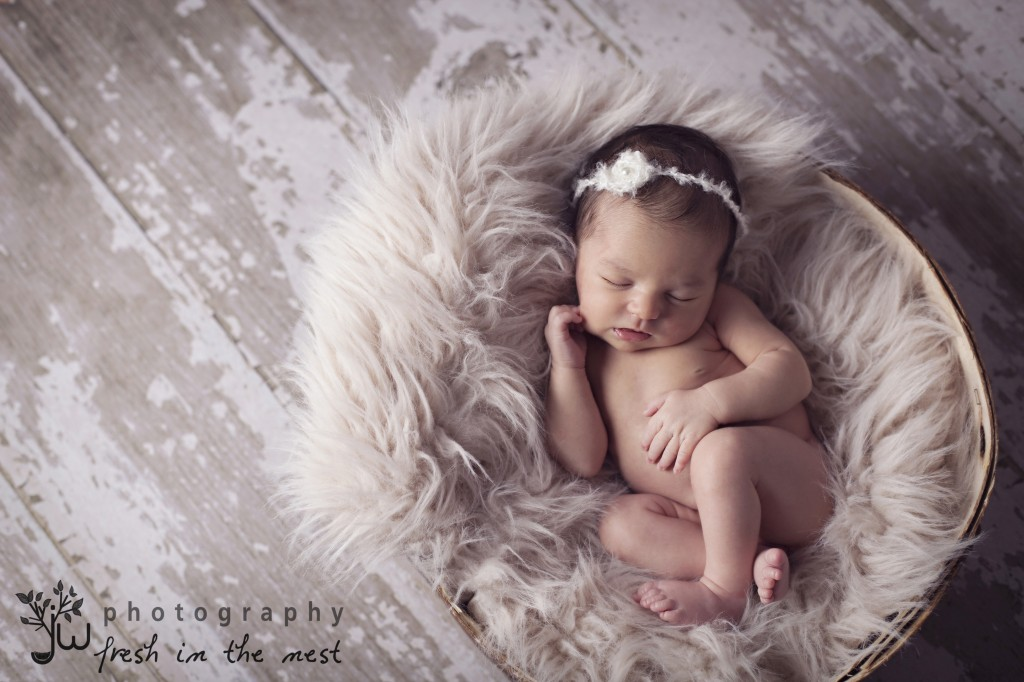 Newborn photographer Seattle Tacoma Puyallup Mya 5 1024x682 Piccolo Stelletta {Newborn Photographer Seattle, Tacoma, Puyallup}