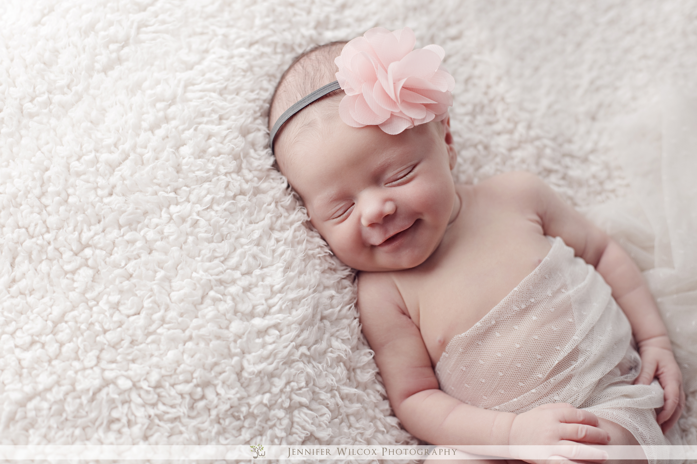 Spider Identification Chart - Venomous or Dangerous? Baby girl newborn photo shoot