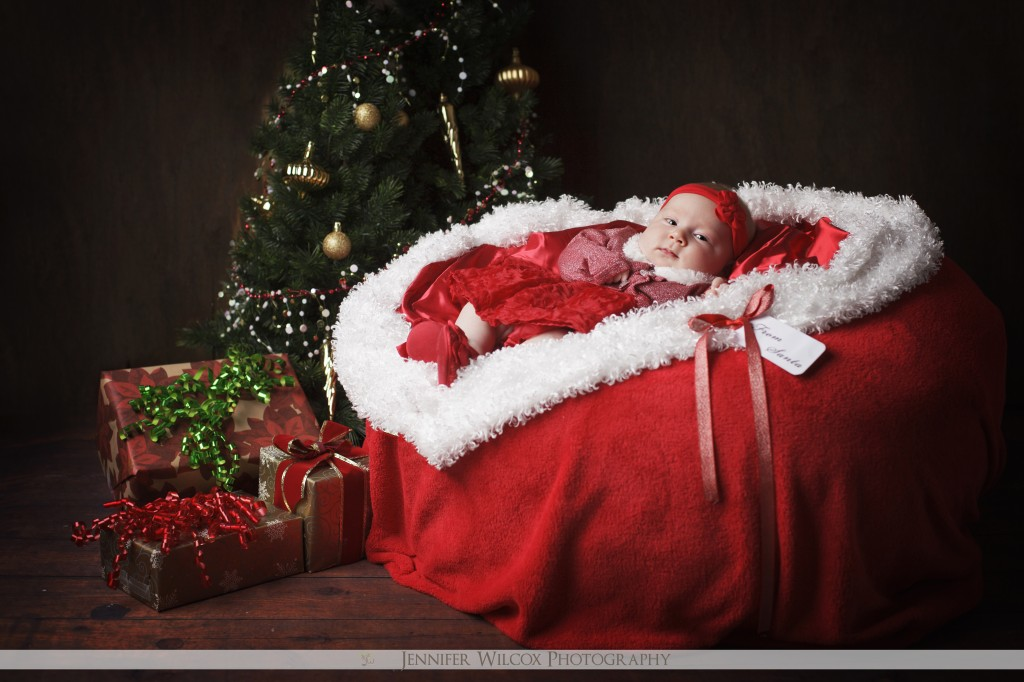 Family Christmas Photo Ideas With Newborn Baby   The Best Gift Baby Grapher  Seattle Ta A