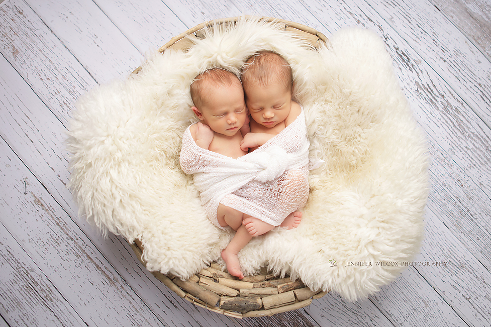 Newborn Photography Seattle Tacoma Gig Harbor Twins 2 Sweetness