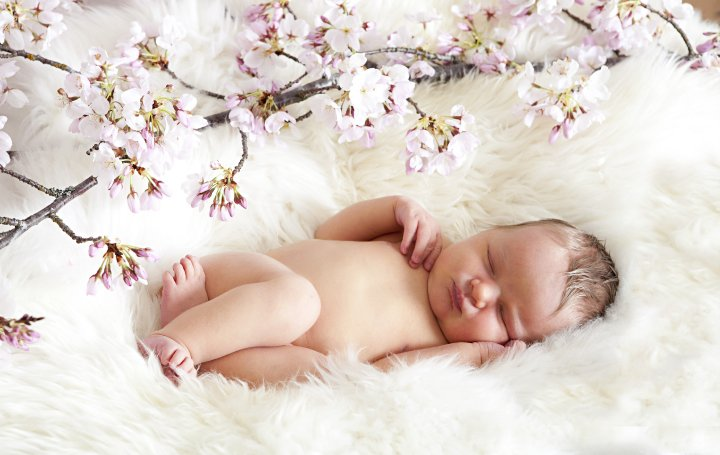 31137 128810380464864 2981863 n Newborn Photographer Puyallup, Hello World