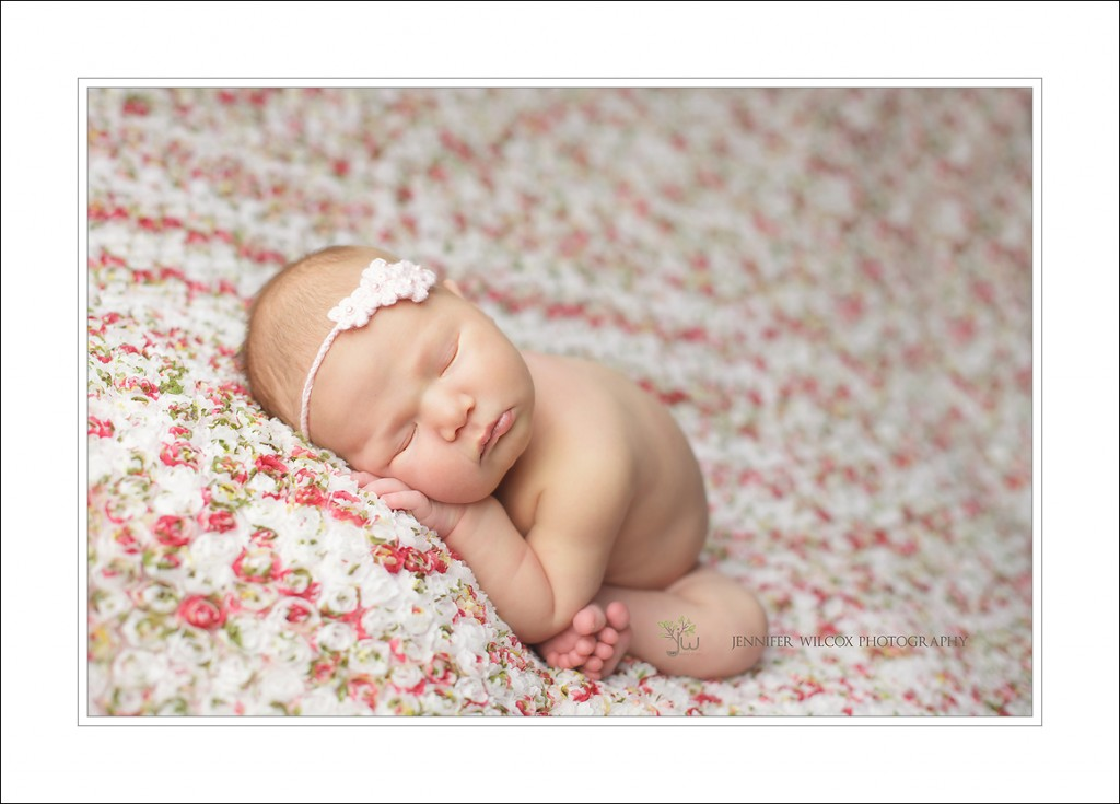 Puyallup Newborn Photographer Danica 2 1024x735 Puyallup Newborn Photographer, Beginnings