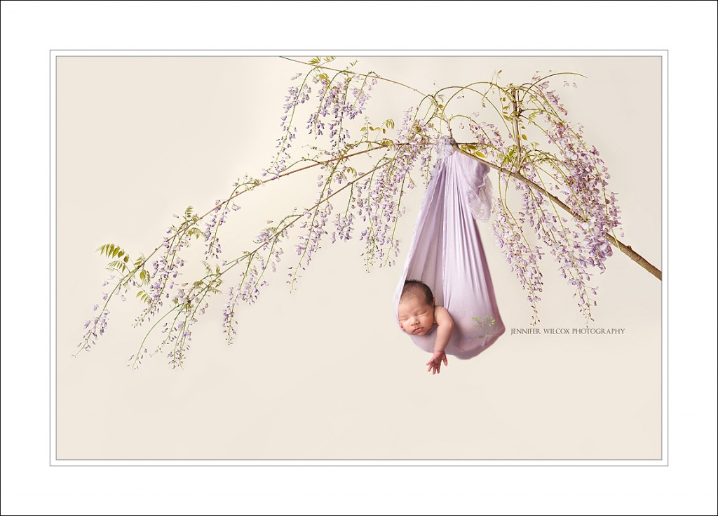 Baby on branch
