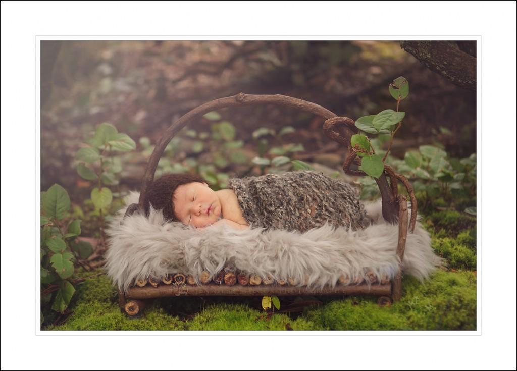 Washington newborn Photographer_jennifer wilcox photography