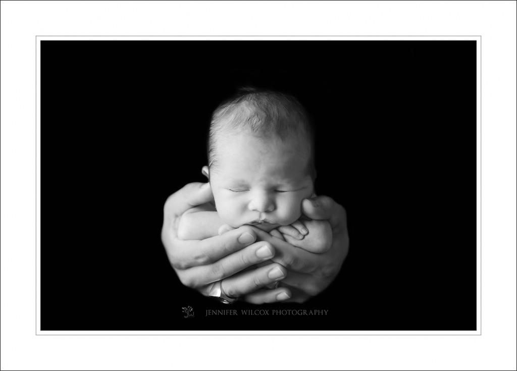 Seattle Newborn Photographer_Jennifer Wilcox Photography_Maverick (1)