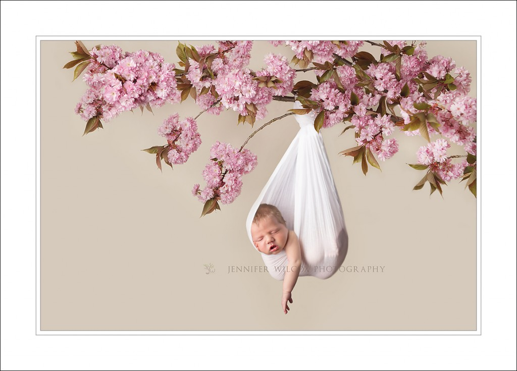 Puyallup newborn photographer jennifer wilcox photography hanging branch baby