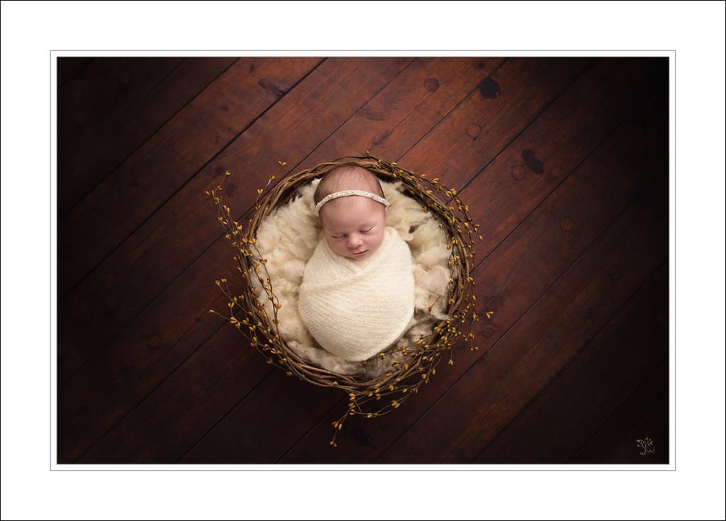 Everett Newborn Photographer_Jennifer Wilcox Photography_Fall baby