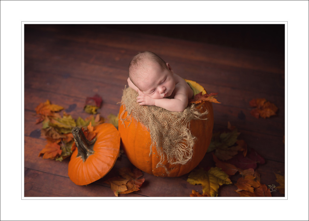 Gig Harbor Newborn Photographer_Jennifer Wilcox Photography_Baby in Pumpkin