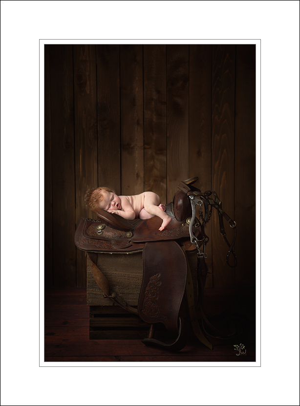 Gig Harbor Newborn Photographer_Jennifer Wilcox Photography_Baby on Saddle
