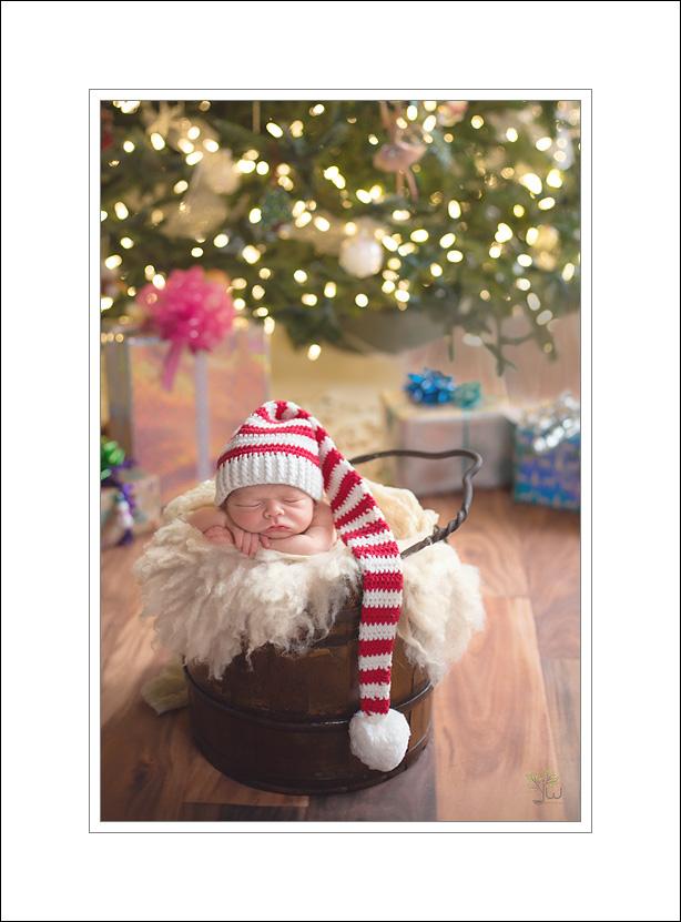 Lacey Newborn Photographer Jennifer Wilcox Photography Christmas Baby Lacey Newborn Photographer ~ Christmas Baby