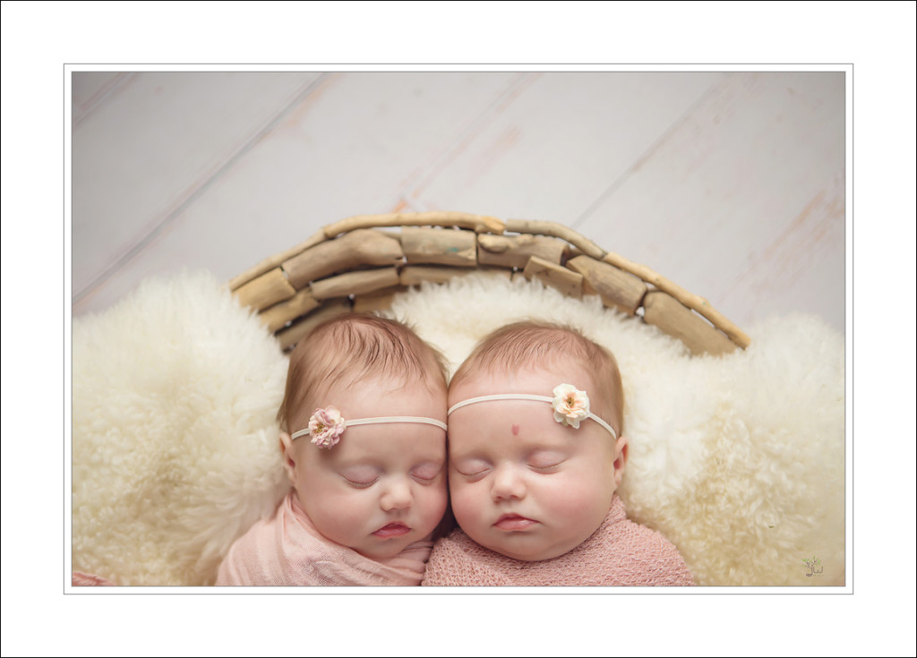 Seattle Newborn Photographer Jennifer Wilcox Photography Twins 1024x735 Seattle Newborn Photographer ~ Sister
