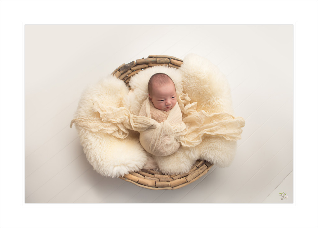 Puyallup Newborn Photographer Jennifer Wilcox Photography baby portriats 1024x735 Puyallup Newborn Photographer ~ Gift