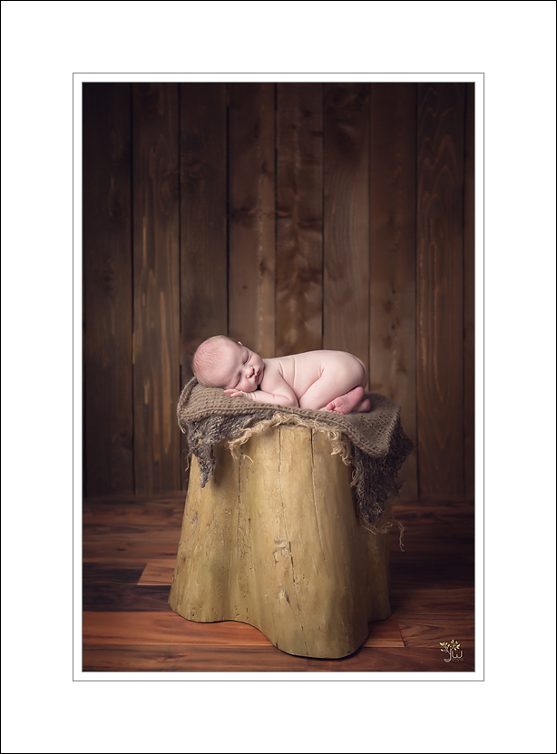 Issaquah newborn photographer baby pictures Jennifer Wilcox Photography babon tree stump 2 Issaquah Newborn Photographer ~ Selflessness