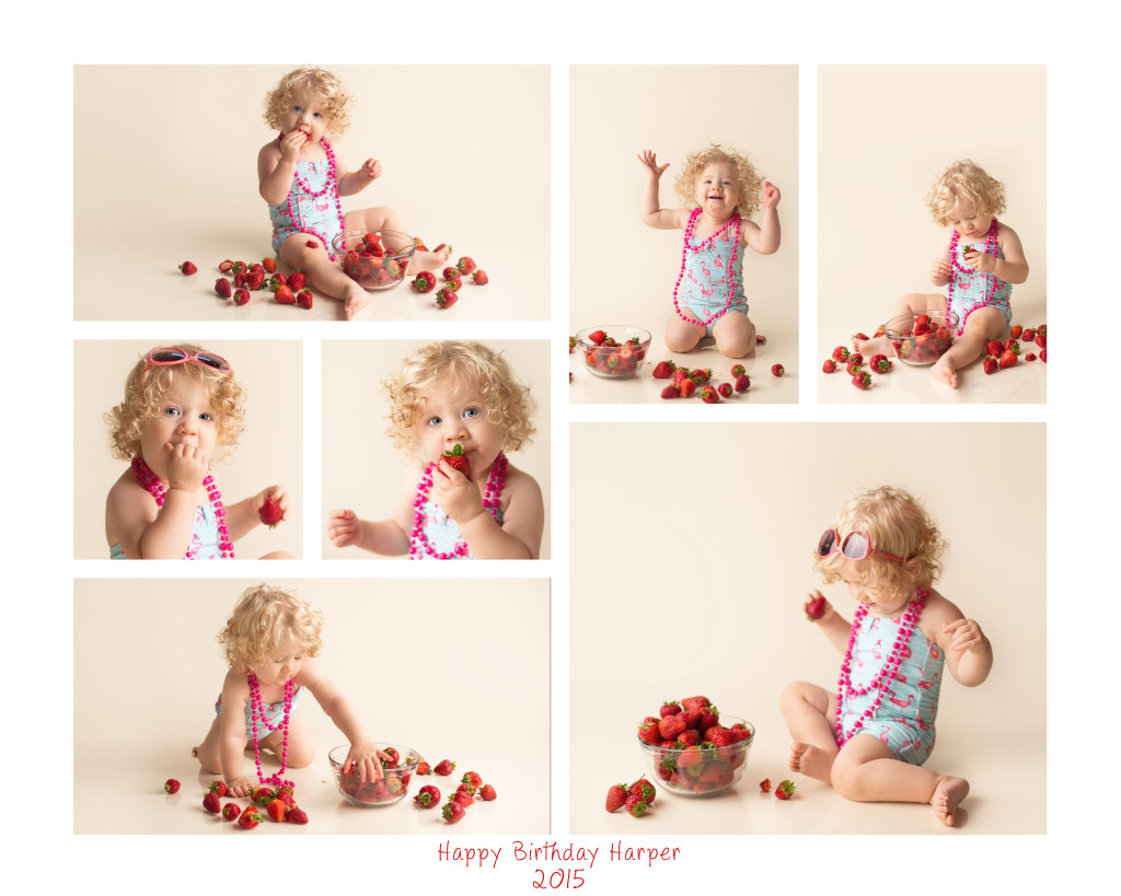 16x20 collage 1024x819 Puyallup Baby Photographer ~ Harpers Birthday