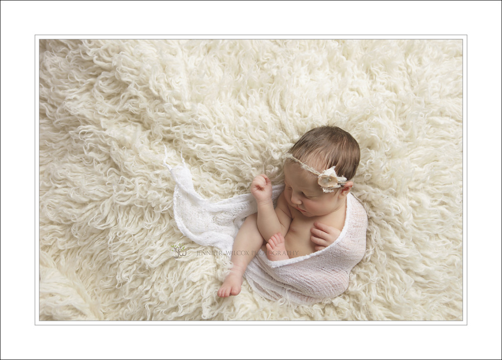 Tacoma Newborn Photographer Jennifer Wilcox Photograhy 5 1024x735 Tacoma Newborn Photographer ~ Jackson