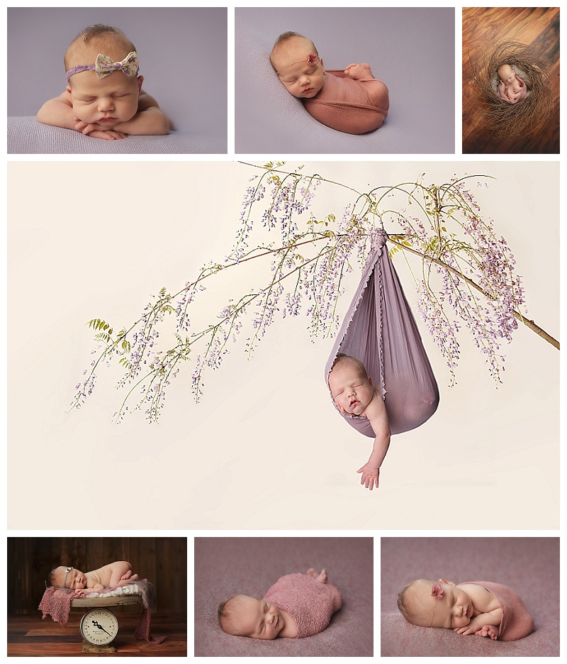 baby, baby pictures, baby portraits,