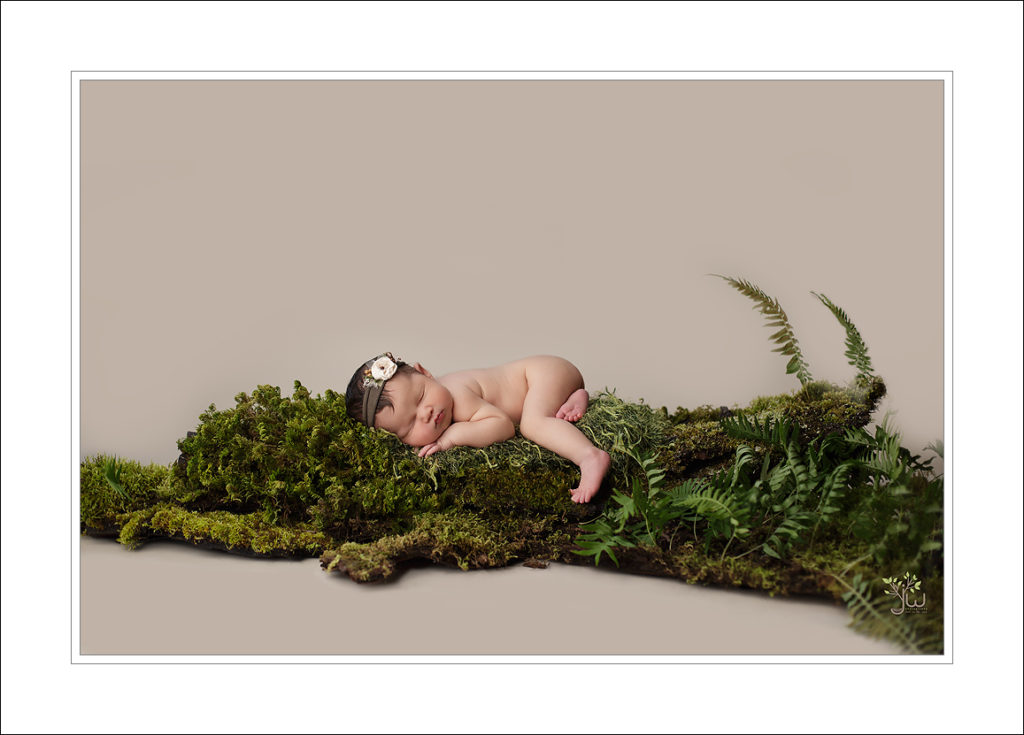 Best Washington newborn photographer