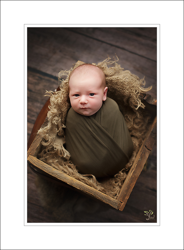 Eatonville newborn photography